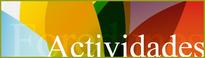 cabecera-foredunes-actividades
