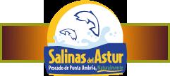 salinas-del-astur